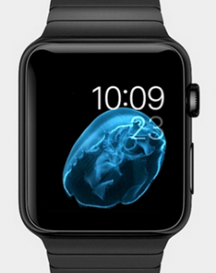 AppleWatch-Gris-Sideral